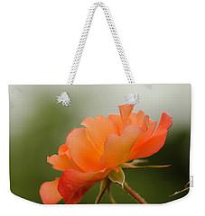 Weekender Tote Bag featuring the photograph Redish Orange by Nick Boren