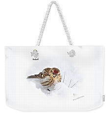 Weekender Tote Bag featuring the photograph Redpoll by Debbie Stahre