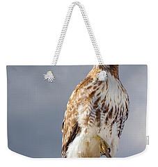 Redtail Portrait Weekender Tote Bag