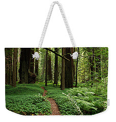 Redwood Forest Path Weekender Tote Bag