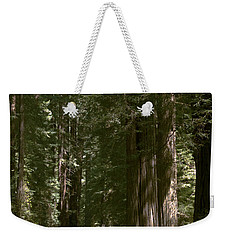 Redwood Highway Weekender Tote Bag by Wes and Dotty Weber