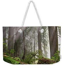 Redwood Light Weekender Tote Bag