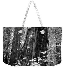 Redwood Trunk Weekender Tote Bag by Craig J Satterlee