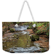 Weekender Tote Bag featuring the photograph Reflecting Autumn by Dale Kincaid