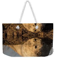 Reflection Of Seal Pup  Weekender Tote Bag