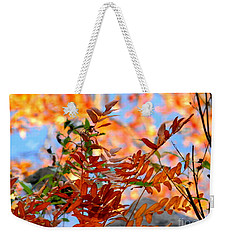 Weekender Tote Bag featuring the photograph Reflections by Elfriede Fulda