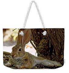 Relaxing Cottontail Weekender Tote Bag