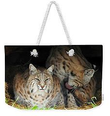 Relaxing Felines Weekender Tote Bag