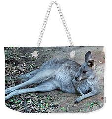 Weekender Tote Bag featuring the photograph Relaxing Kangaroo by Miroslava Jurcik