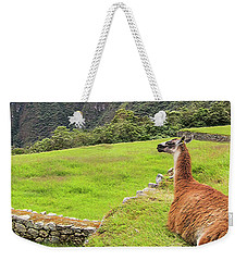 Relaxing Llama In Machu Picchu Weekender Tote Bag