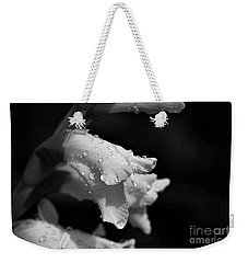Remembering You Two Weekender Tote Bag by Patti Whitten