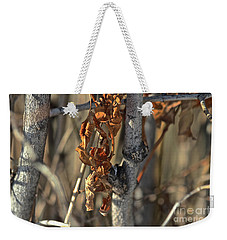 Remnants Of Fall Weekender Tote Bag