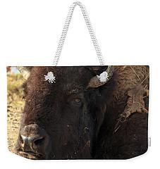 Resting Buffalo Weekender Tote Bag
