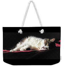 Resting Cat Weekender Tote Bag by Maciek Froncisz