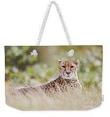 Resting Cheetah Weekender Tote Bag