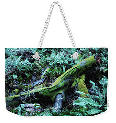Resting Comfortably Weekender Tote Bag by Donna Blackhall