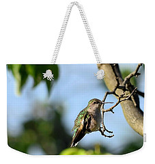 Resting Hummingbird Weekender Tote Bag by Kathy Eickenberg