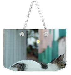 Resting Kitten  Weekender Tote Bag