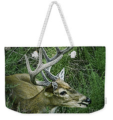 Weekender Tote Bag featuring the photograph Resting Male Deer by Melissa Messick