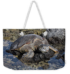 Weekender Tote Bag featuring the photograph Resting My Head by Pamela Walton