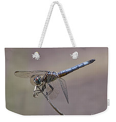 Resting My Wings Weekender Tote Bag