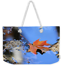 Weekender Tote Bag featuring the photograph Resting On Gold And Blue by Doris Potter