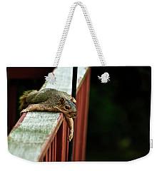 Resting Squirrel Weekender Tote Bag