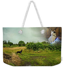 Rex Discovers Saint Peter Is A Cat Weekender Tote Bag