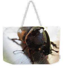 Weekender Tote Bag featuring the photograph Rhinoceros Beetle by Martin Howard