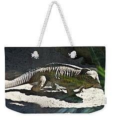 Weekender Tote Bag featuring the photograph Rhinoceros Iguana by Miroslava Jurcik