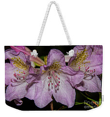 Weekender Tote Bag featuring the photograph Rhododendron Bliss by Barbara Bowen