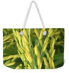 Rice Harvest  Weekender Tote Bag