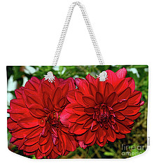 Weekender Tote Bag featuring the photograph Rich Red Dahlias By Kaye Menner by Kaye Menner