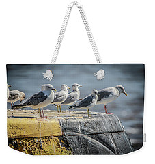 Ring Billed Gulls Weekender Tote Bag by Ray Congrove