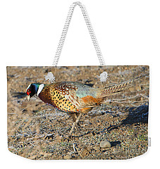 Ring-necked Pheasant Rooster Weekender Tote Bag by Mike Dawson
