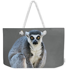 Ring-tailed Lemur #6 V2 Weekender Tote Bag