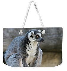 Ring-tailed Lemur #7 Weekender Tote Bag