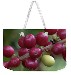 Weekender Tote Bag featuring the photograph Ripe Kona Coffee Cherries by Susan Rissi Tregoning