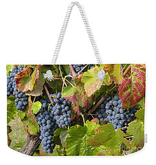 Ripe On The Vine Weekender Tote Bag by Arlene Carmel