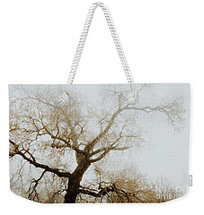 Weekender Tote Bag featuring the photograph Rising by Iris Greenwell