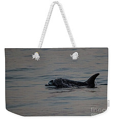 Weekender Tote Bag featuring the photograph Risso's Dolphins by Suzanne Luft