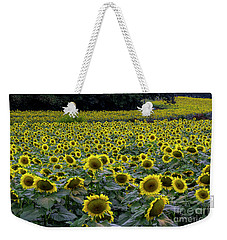 Weekender Tote Bag featuring the photograph River Of Sunflowers by Barbara Bowen