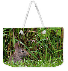 Roadside Rabbit Weekender Tote Bag
