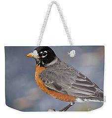 Weekender Tote Bag featuring the photograph Robin by Douglas Stucky