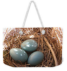 Weekender Tote Bag featuring the photograph Robin Eggs by Angie Rea
