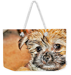 Weekender Tote Bag featuring the photograph Robin by Mindy Newman