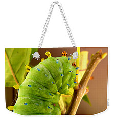 Weekender Tote Bag featuring the photograph Robin Moth Caterpillar by Claire Bull