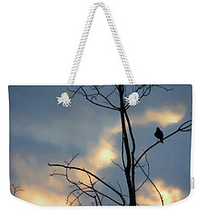 Weekender Tote Bag featuring the photograph Robin Watching Sunset After The Storm by Sandi OReilly