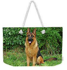 Weekender Tote Bag featuring the photograph Rocco Sitting by Sandy Keeton