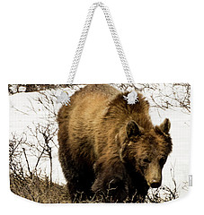 Rockies Grizzly Weekender Tote Bag